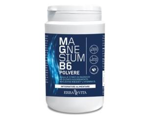 MAGNESIUM B6 Polv.200g     EBV