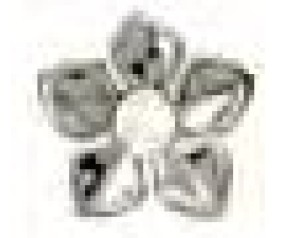 BJT984 ORECCHINI CRYSTAL OLEAN
