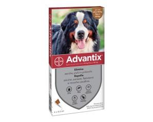 ADVANTIX Spot-On 4x6ml 40-60Kg
