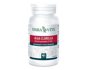 Erba Vita Alga Clorella Integratore Alimentare 60 Capsule