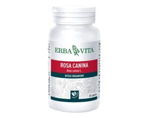 Erba Vita Group Rosa Canina 60 Capsule 400 Mg