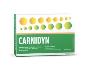 Carnidyn Integratore Alimentare Creatina Carnosina Vitamina E 20 Buste 5 g