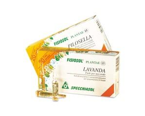 Specchiasol Fisiosol 15 Cu Rame 20 Fiale 2 ml
