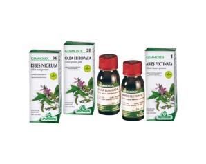 Specchiasol Gemmosol 46 Tiglio Argentato 50 ml