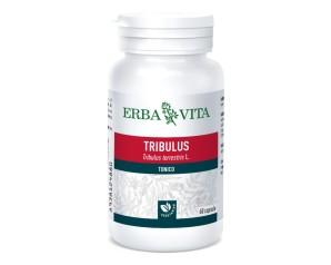 Erba Vita Group Tribulus Terrestris 60 Capsule 500 Mg