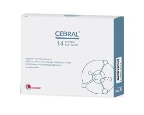 CEBRAL 14BUST