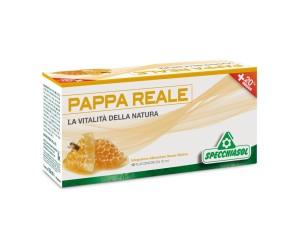 Specchiasol Pappa Reale Plus 12 Flaconcini 10 ml